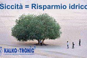 Italia è ad alto rischio desertificazione