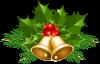 zuchristmas-separator.png